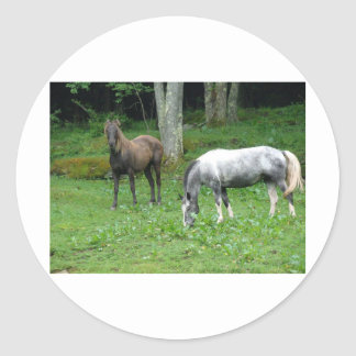 FRIENDLY HORSES STICKERS