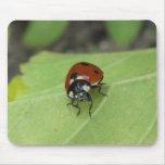 Friendly Ladybug Mousepads