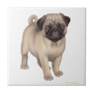 Friendly Pug Puppy Tile