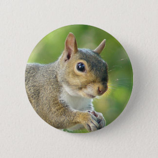 Friendly Squirrel Animal Button