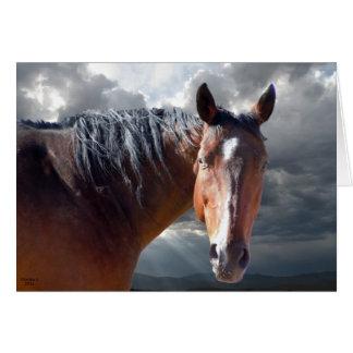 Friendly Support - Big Bay Horse - Ranch or Farm Greeting Card