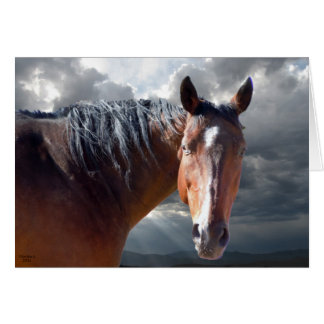 Friendly Support - Big Bay Horse - Ranch or Farm Greeting Card