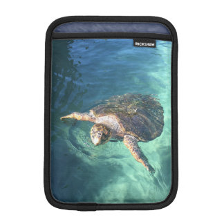 Friendly Turtle in Mexico iPad Mini Sleeve
