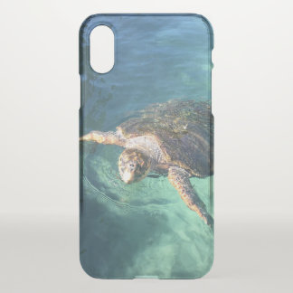 Friendly Turtle in Mexico iPhone X Case