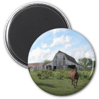 Friendly Welcome 6 Cm Round Magnet