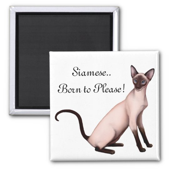 Friendly Young Siamese Cat Customisable  Magnet