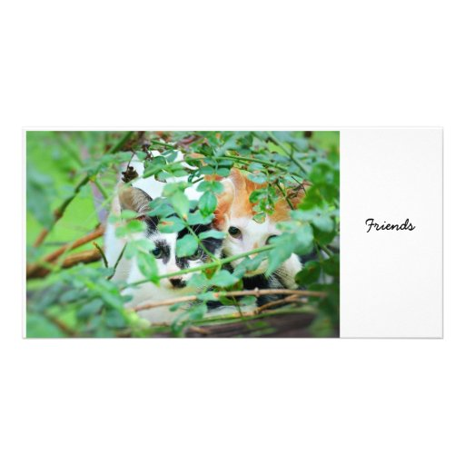 Friends 04 personalized photo card