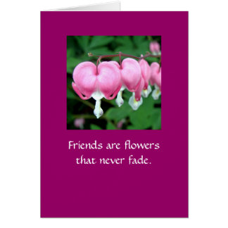 Friends are flowers that never fade.  WI BB Card