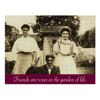 Friends are roses in the garden of life post cards