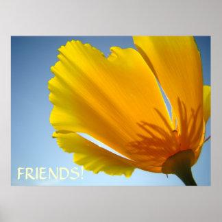 FRIENDS! Art Prints POPPY FLOWERS Blue Sky Art Posters