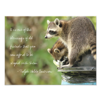 Friends & Blessings Friendship Quote Raccoons Photographic Print