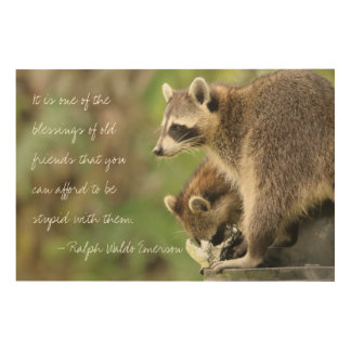 Friends & Blessings Friendship Quote Raccoons Wood Canvas