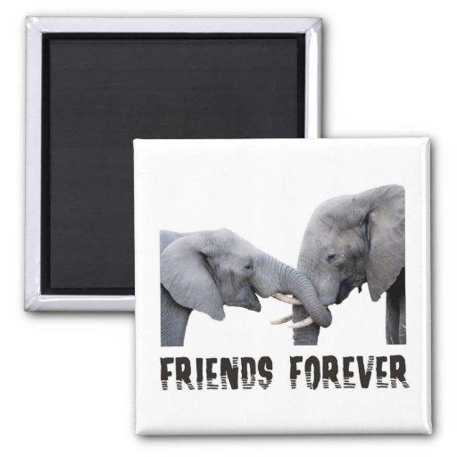 Friends Forever Elephants hugging / kissing Magnets