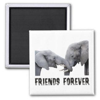 Friends Forever Elephants hugging / kissing Square Magnet
