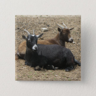 Friends Forever Goats 15 Cm Square Badge