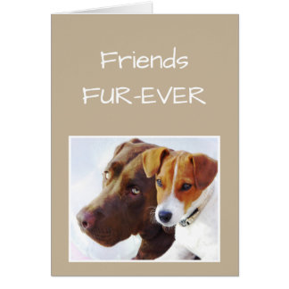 FRIENDS FOREVER OR Fur-ever Dog Humor Card