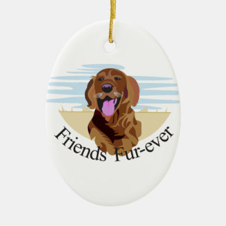 Friends Fur-Ever Ceramic Oval Decoration