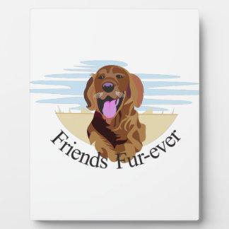 Friends Fur-Ever Display Plaques