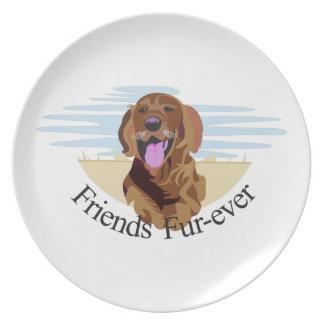 Friends Fur-Ever Plates