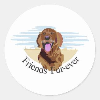Friends Fur-Ever Round Sticker