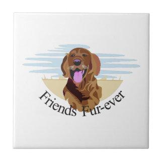 Friends Fur-Ever Small Square Tile