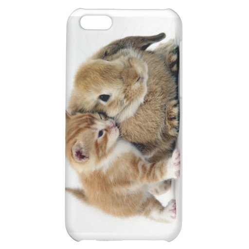 Friends Case For iPhone 5C