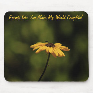 Friends Like You Mouse Mat