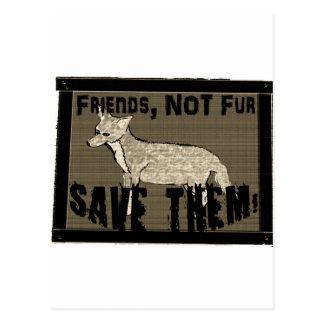 Friends not fur 2 cut out.jpg post card