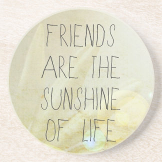 Friends & Sunshine Coaster