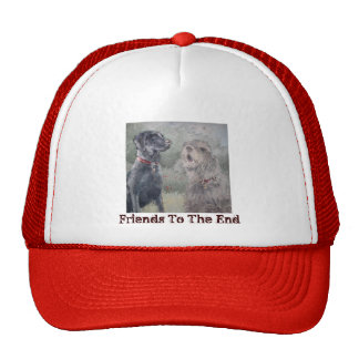 """Friends To The End"" Cap"