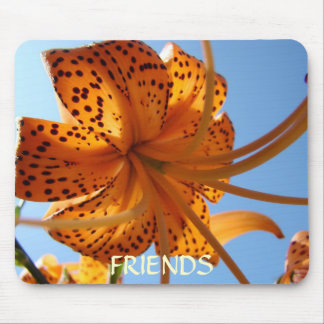 FRIENDSHIP GIFTS Mousepad Orange Tiger Lily Gift