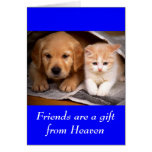 Friendship Golden Retriever Puppy  & Kitten  Card