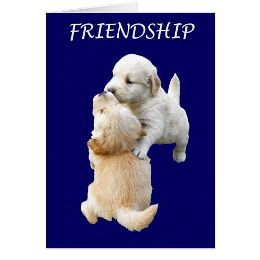 Friendship Paper Greeting Card, Puppies