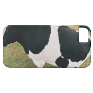 Friesian牛の側面図 Barely There iPhone 5 Case