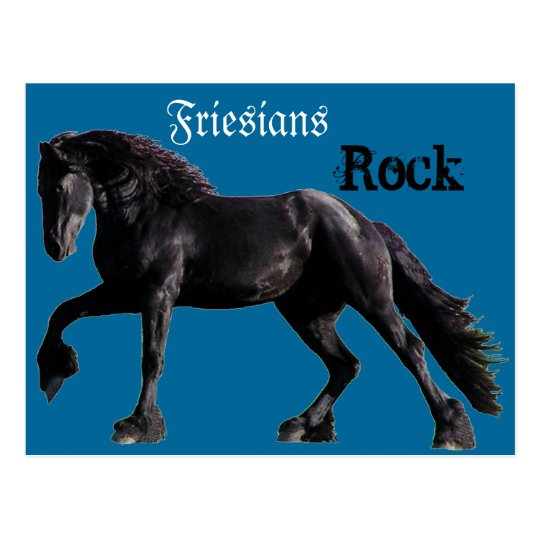 Friesian Classic Postcard