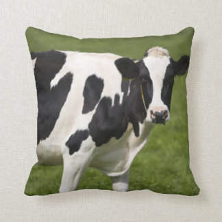 Friesian cow cushions