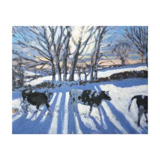 Friesian Cows 2009 Canvas Print
