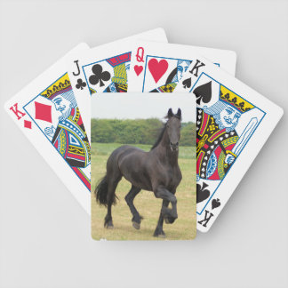 Friesian Horse Deck of Cards