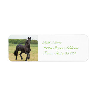 Friesian Horse Mailing Labels