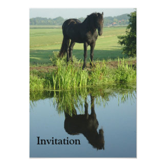 Friesian Horse Reflection in water 13 Cm X 18 Cm Invitation Card