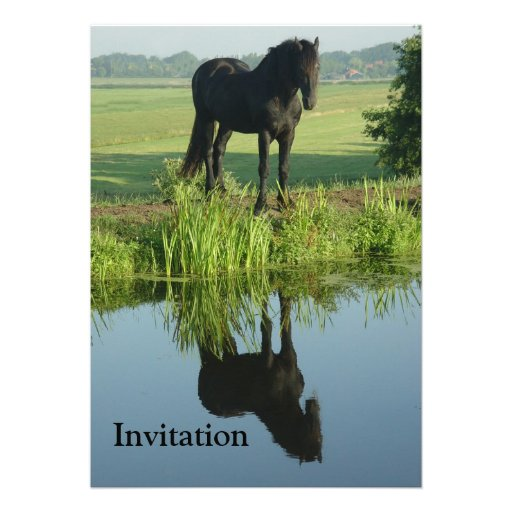 Friesian Horse Reflection in water Custom Invites