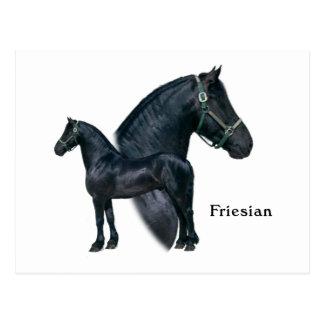 Friesian Postcard