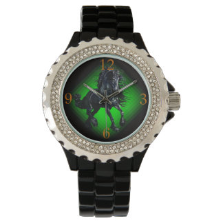 Friesian stallion black beauty horse watch
