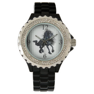 Friesian stallion black beauty horse watches