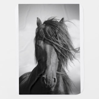 Friesian stallion in the wind. baby blanket