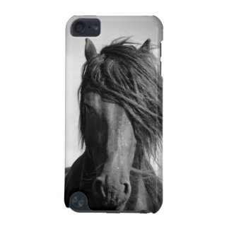 Friesian stallion in the wind. iPod touch 5G cover