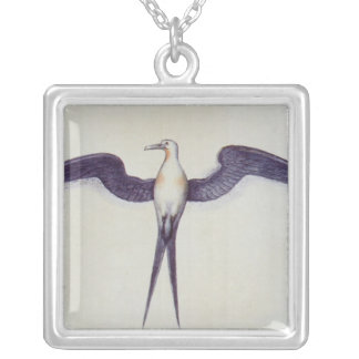 Frigate Bird Silver Plated Necklace