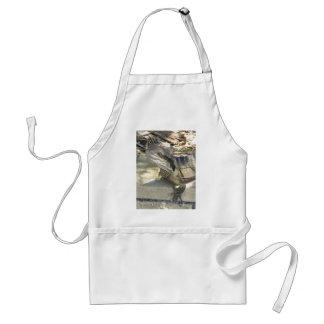 Frill neck lizard standard apron