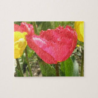 Fringed Tulips Puzzle