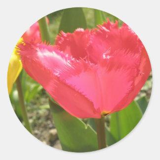 Fringed Tulips Sticker Round Sticker